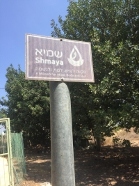 sign for Shmaya mikveh