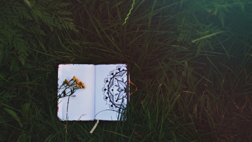 dark green grass with open notebook showing black ink circular design on one page and blank page opposite covered in a few dandelions