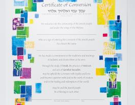 artistic certificate for conversion of adult male