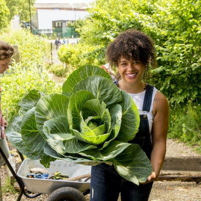 woman holding large lettuce or canbbage plant
