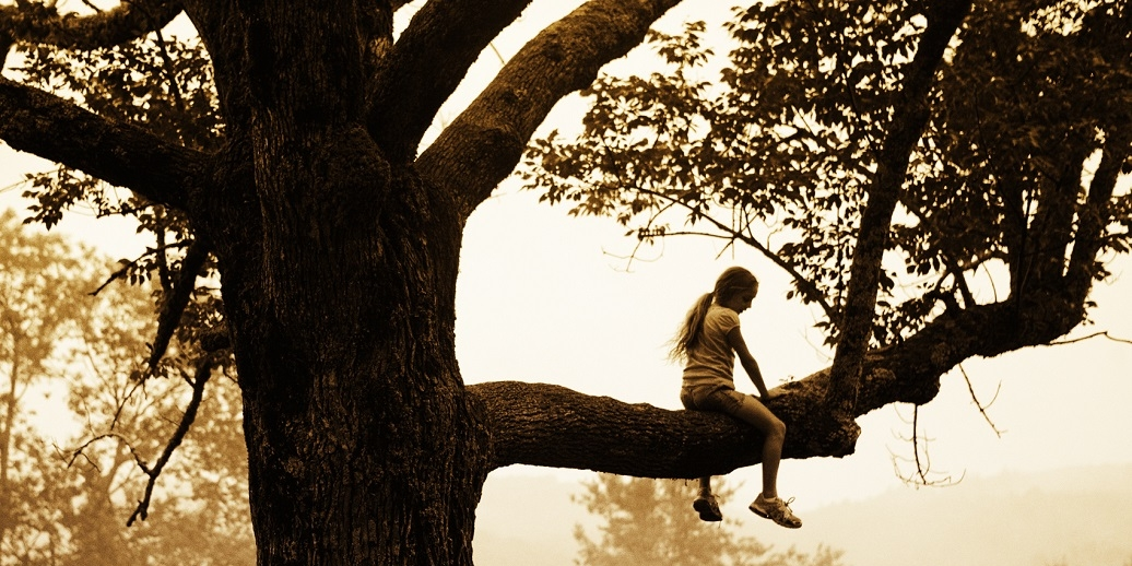 Girl sitting on tree limb