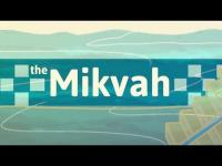 What is a Mikvah? An introduction to the Jewish Ritual Bath