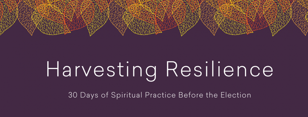 Harvesting Resilience banner with leaves
